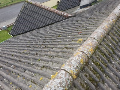 Before Roof is Cleaned
